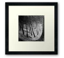 woodland sketch 2 Framed Print