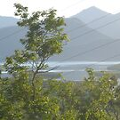 Hinchinbrook Channel - North Queensland, Australia by myhobby