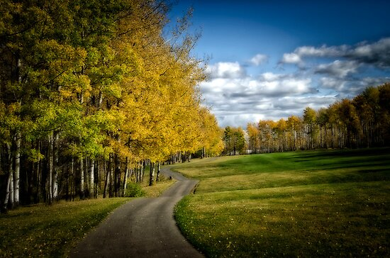 Lake Point Golf &Country Course Autumn  by peaceofthenorth