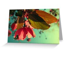 Afternoon Delight Greeting Card