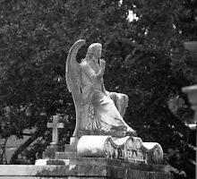 Cemetery Statue by Jennifer  Causley
