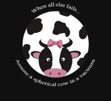 Spherical Cow by ajwelsh