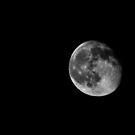 The Moon by Cat Brady
