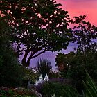 Sunset in the garden by Celeste Mookherjee