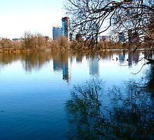 View of Downtown Austin - Austin, TX by MalinRawl