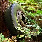 Big Wheel by Stephen D. Miller