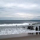 Gloomy Shores - Brooklyn, NY by MalinRawl