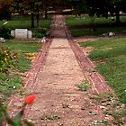 Cemetery Path with a Bloom by Martha Andreatos