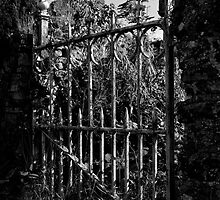 Please Use Other Gate by David J Knight