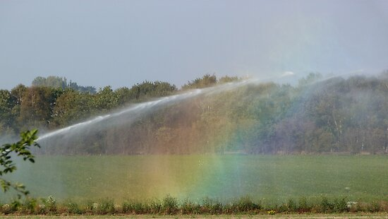 Throwing Rainbows by John Dunbar