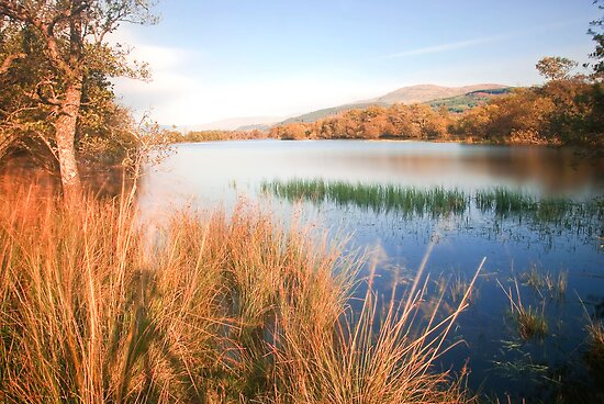 Loch Tay (Scotland) by Stephen Knowles