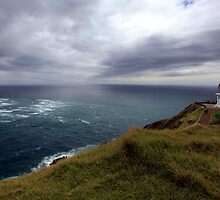 Cape Reinga lighthouse  by tonyfoster