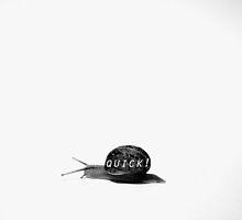 Quick! by ShovellingSon