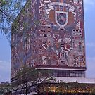 University of Mexico, Architectural Art. by johnrf
