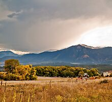 Foothill Foliage by SeanCH