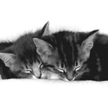 Kittens' Time Out by Melanie Conway