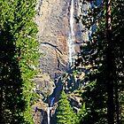 Yosemite Falls by Tamara Valjean