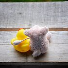 Karens Piggy trying a move on Ducky by Simon Duckworth