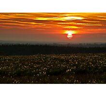 Halnaker Sunset Photographic Print