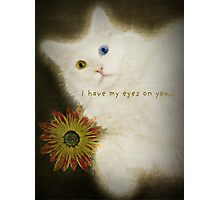 I Have My Eyes on You Photographic Print