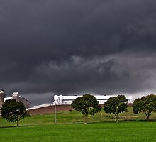 A Storm Is Brewing by jules572