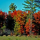 Hay! It's Fall by Robert Goulet