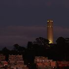 the Fire of Coit Tower by fototaker