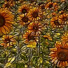 Sunflowers by Trevor Kersley
