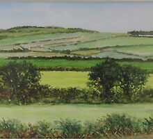 CAVAN SUMMER by David Seavers