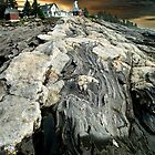Pemaquid Rocks by Carolyn  Fletcher