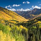 Valley in fall colors by Eivor Kuchta