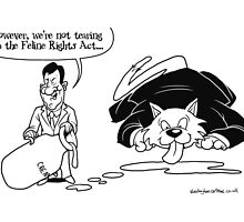 Feline Rights Act by Alex Hughes