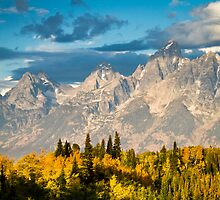 Fall Leaves and the Teton Mountains by cavaroc