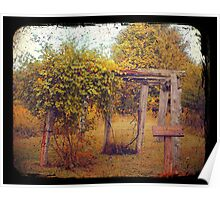 Uwharrie Grape Arbor (TTV) Poster