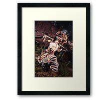 McCormick Framed Print