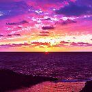 Here Comes The Sun by David Alexander Elder