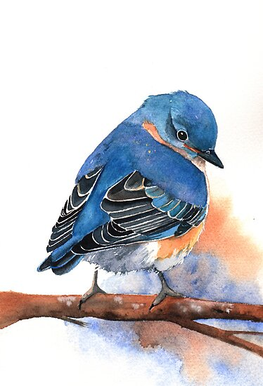 Bluebird by Louise De Masi
