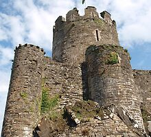Conwy Castle by kalaryder
