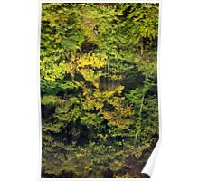 Autumn reflections in the Rhone river Poster