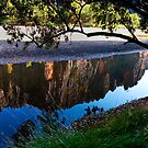 Windjana Reflection by Andrew Dickman