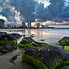 Coolangatta green and gold by Jayde Aleman