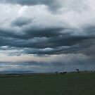 Rain Over the Fields by Will Barton