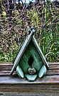 Bird house with grass background by Sandra Foster