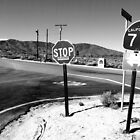 Desert Highway Crossing by Brett Hanavan