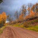 Wyoming Fall by Cyn  Valentine