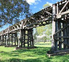 Railway Viaduct, Gundagai NSW by Tim Coleman