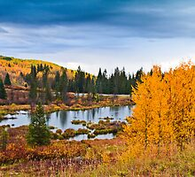 Lake on Grand Mesa - in Colorado by Susan Humphrey