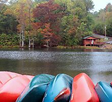 Kayaks And Fly Shop at Beavers Bend by Carolyn  Fletcher