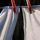 White sheets pegged on washing line, close-up by Sami Sarkis