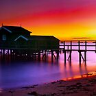 Portsea Dawn, Victoria by Christopher Ashdown
